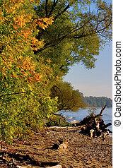 Falling Lake Shore - Fall, woods, shoreline. Southern...