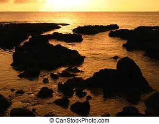Coral Reefs at Evening Time - -- looking out over the East...