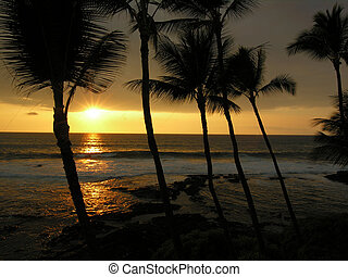 Big Island Sunset - Big Island Of Hawaii