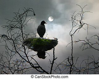 Apparition - Black bird on lake with reflection of branches...
