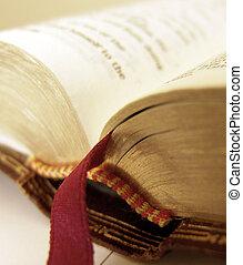 Bible - Open Bible