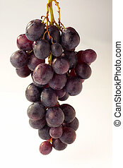 Grapes - Weintrauben - Grapes on white Background -...