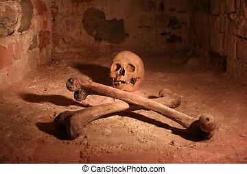 Skull and Crossbones - Skull and crossbones