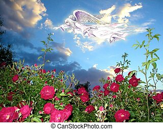 Paradise on Earth - Beautiful shoot through rose bushes with...