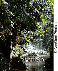 natural shower - Waterfall in Madagascar