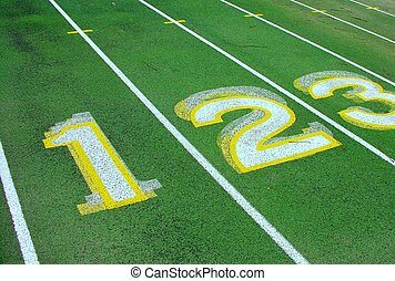 Numbered lanes on a green track.