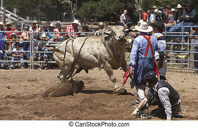 Rider Down - Rodeo rider is off the bull