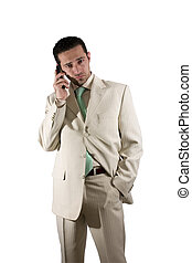 Businessman on the PDA phone - Businessman on the phone with...