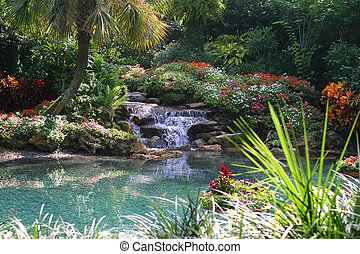 Tropical Pond - Landscaped tropical pond with waterfall...