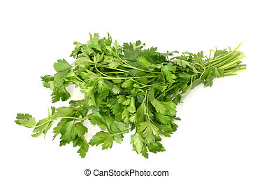 parsley isolated #2