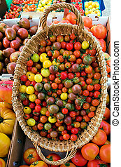 Colorful Tomatoes - A basket of multi-colored cherry...