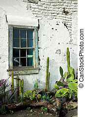 Desert Garden - Window in an adobe wall over a cactus garden...