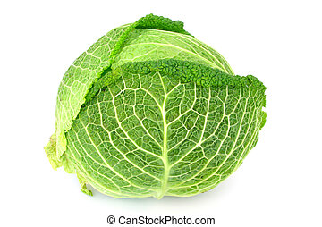 cabbage - isolated