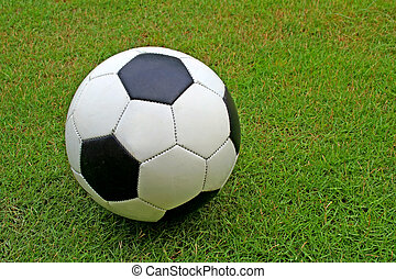 Soccer Ball - A soccer ball on grass
