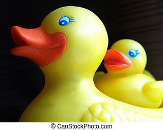 borracha,  duckie