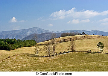 Farmland - Farming in Virginia