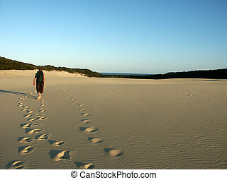 man hiking dunes on fraser island australia near lake wobby...