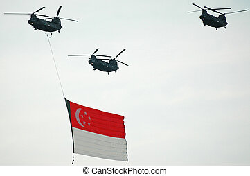 Singapore flag - Singapore Flag held by Chinnook