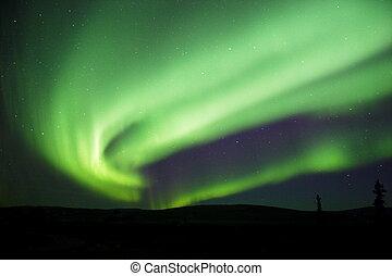 aurora, borealis