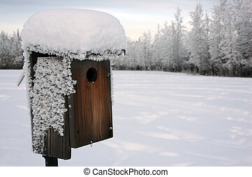 Winter Bird House - Bird house in winter with snow and ice...