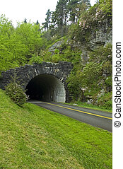 JW_029_067_05 - Early Spring,Tunnel, Blue Ridge Parkway, NC