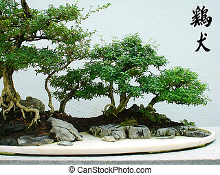 Chinese characters -  Bonsai and Chinese characters
