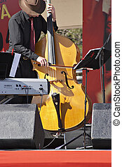 Yellow Bass - Musician playing a yellow bass