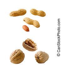 Nuts - Peanuts and walnuts isolated on white