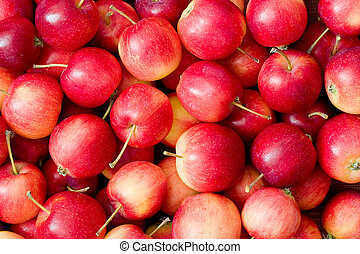 Red Apples - Apple background