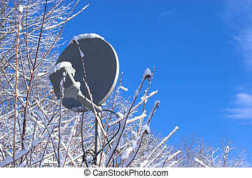 TV Satellite Dish blocked by trees and snow
