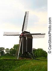 WIndmill - Windmill  in Holland