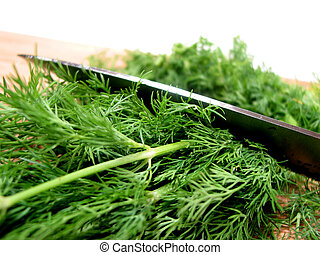 Dill herb cut - Cutting fresh dill on a cutting board, white...