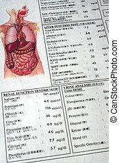 médico, Chequeo, informe