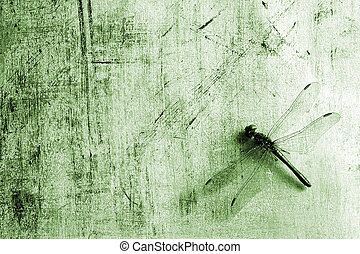 Dragonfly - Background with dragonfly in sepia tone.