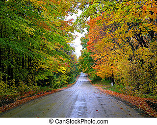 Country road - A fall country road in the Caledon Hills,...