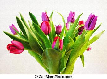 Tulips - Bunch of tulips