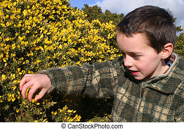 Curiousity - Young child, curious about nature