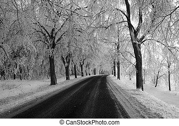 way - black and white way