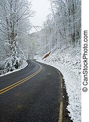 JW_019_071_05 - Snowy Roadway in Western North Carolina