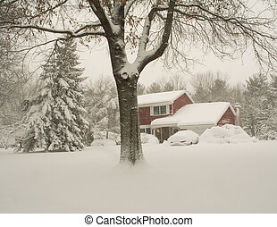 Covered - This is a shot of a rural home covered in snow...