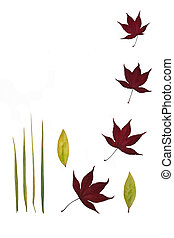 Leaf Stillness - Four acer leaves, four bamboo leaves and...