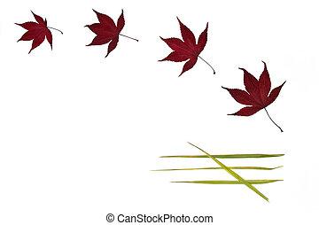 Leaf Simplicity