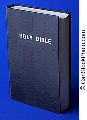 santo, biblia, azul, Plano de fondo