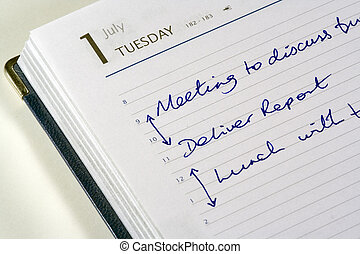 Todays Diary - Diary open showing appointments