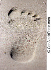 Footprint - footprint on sand