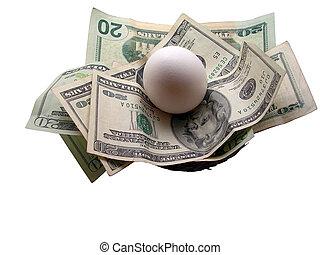 Nest Egg - White egg laid on twenty dollar bills inside a...