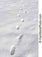 snow foot prints