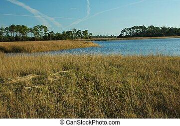 Gulf Grass Flats 2 - The grass flats near Shell Mound...