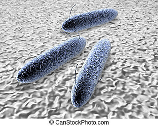 Bacteria - Microscopic Bacterias. High res 3D render.