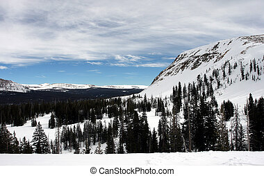 Mountain Vista - Sweeping snowy mountain landscape view.